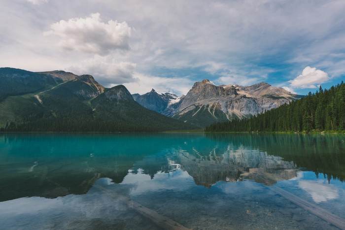 10 Reasons to fly to canada in 2019